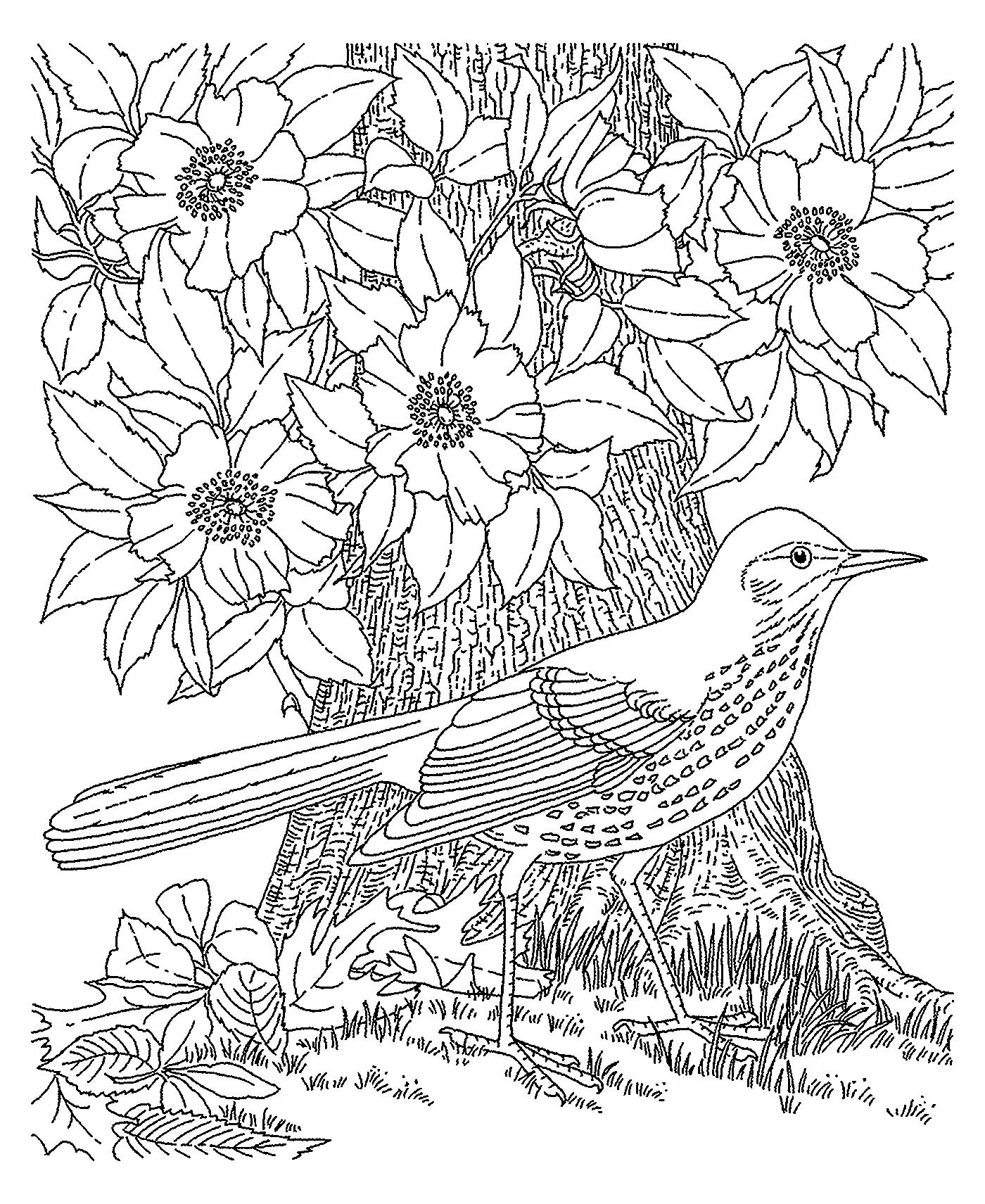 Журнал раскраска для детей