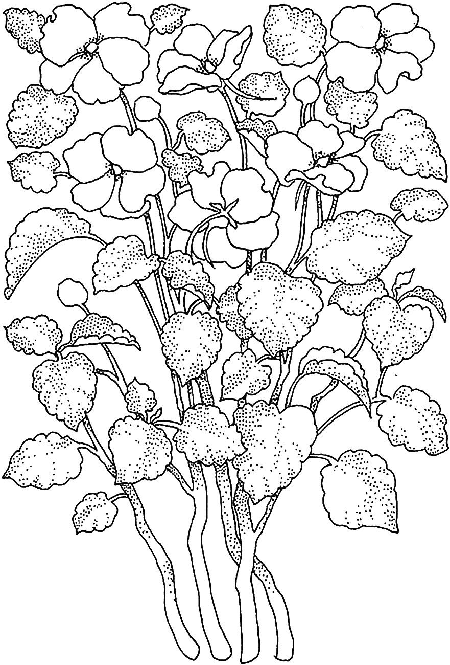 Naked adult coloring pages hentai galleries