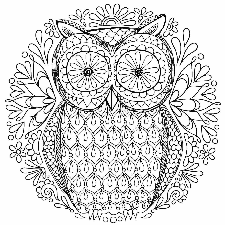 Раскраски антистресс сова распечатать