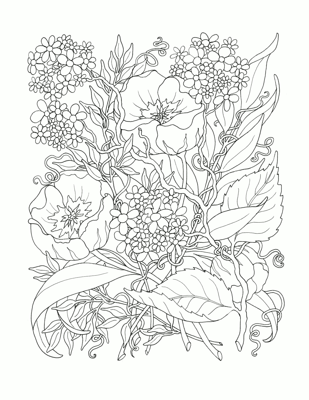 Напечатать цветы раскраски